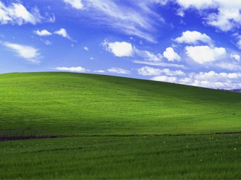 inetis ne fera plus que des sites en bleu et vert